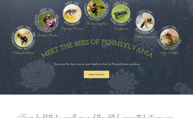 Bee Friendly Communities